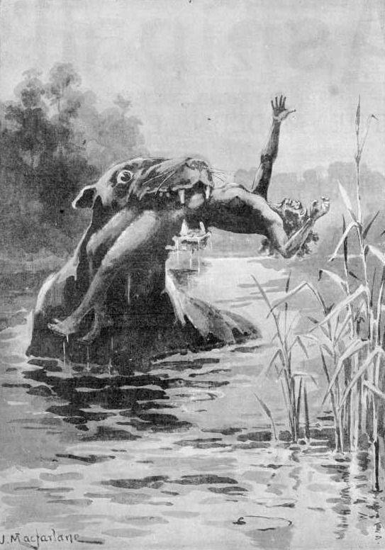 Picture Of Bunyip Creature Attack