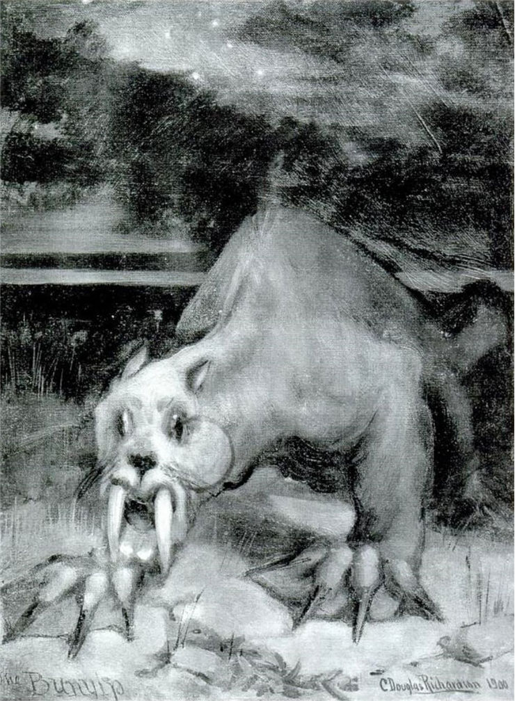Picture Of Bunyip