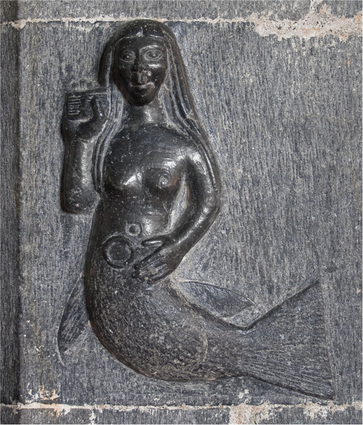 Picture Of Irish Mermaid Merrow